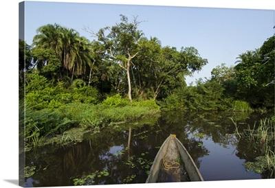 Dugout canoe on Lekoli River, Democratic Republic of the Congo