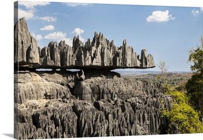 Eroded limestone pinnacles, Mahajanga, Madagascar