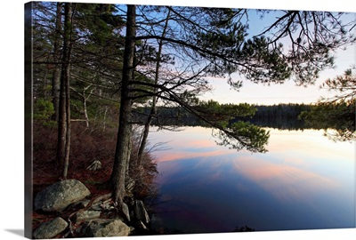 Forest along lake shore at sunset, Kejimkujik National Park, Nova Scotia, Canada