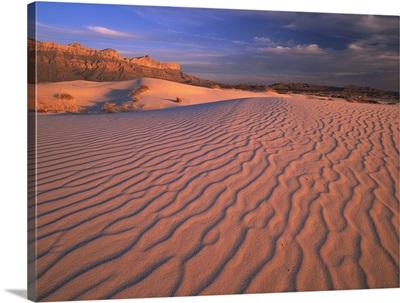 Gypsum dunes, Guadalupe Mountains National Park, Texas