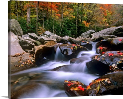 Little Pigeon River, Great Smoky Mountains National Park, Tennessee