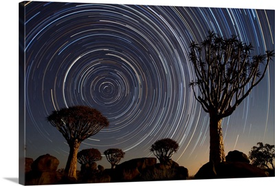 Quiver Tree group and star trails, Keetmanshoop, Namibia