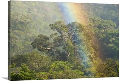 Rainbow over rainforest canopy, Costa Rica