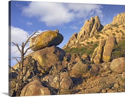 Rockpile, Davis Mountains, Chihuahuan Desert, Texas