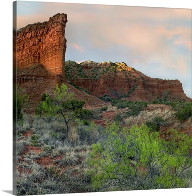 Sandstone cliffs, Caprock Canyons State Park, Texas
