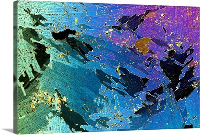Sea ice core one millimeter thick photographed under polarized light