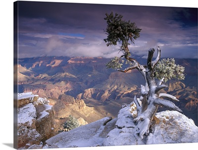 South Rim of Grand Canyon with a dusting of snow seen from Yaki Point