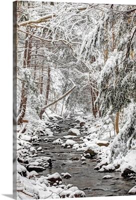 Stream in winter, Nova Scotia, Canada