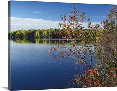 Tobique River, New Brunswick, Canada