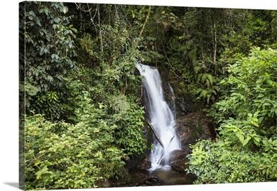 Waterfall in rainforest, Ranomafana National Park, Madagascar