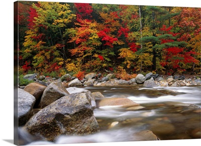Wild river in eastern hardwood forest White Mountains National Forest Maine