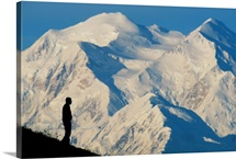 A hiker silhouetted against snow-covered Mount McKinley, Denali National Park, Alaska