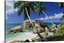 A rocky beach and palm trees make for a scenic view on La Digue Island