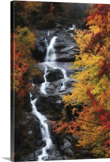A waterfall surrounded by trees in vibrant fall colors