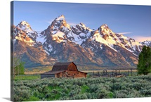 An old Mormon barn sits at the base of Grand Teton