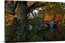 Footbridge over a pond with autumn foliage, Cooperstown, New York