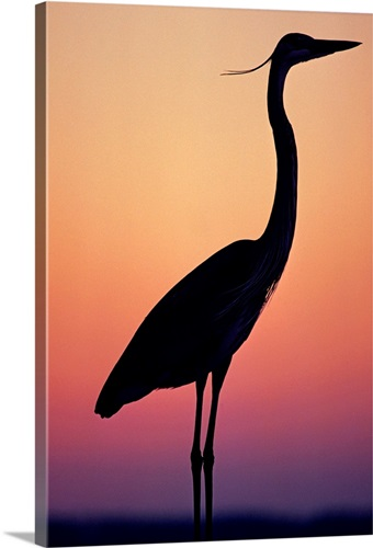 great egret silhouette wall art canvas prints framed prints wall