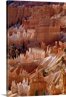 Hoodoo formations from Sunrise Point, Bryce Canyon National Park, Utah