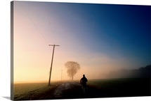 Jogger runs down a rural road in early morning fog, Red Hook, New York