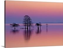 Lake Mattamuskeet, Mattamuskeet National Wildlife Refuge, Swanquarter, North Carolina