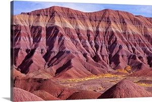 Painted Desert Petrified Forest National Park Arizona