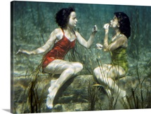 Performing swimmers put on lipstick in this northern Florida site