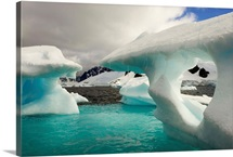Sculpted icebergs under clouds near Couverviller Island, Antarctica