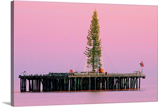 Sunset framing a Christmas tree on Stearn\'s Wharf, Santa Barbara ...