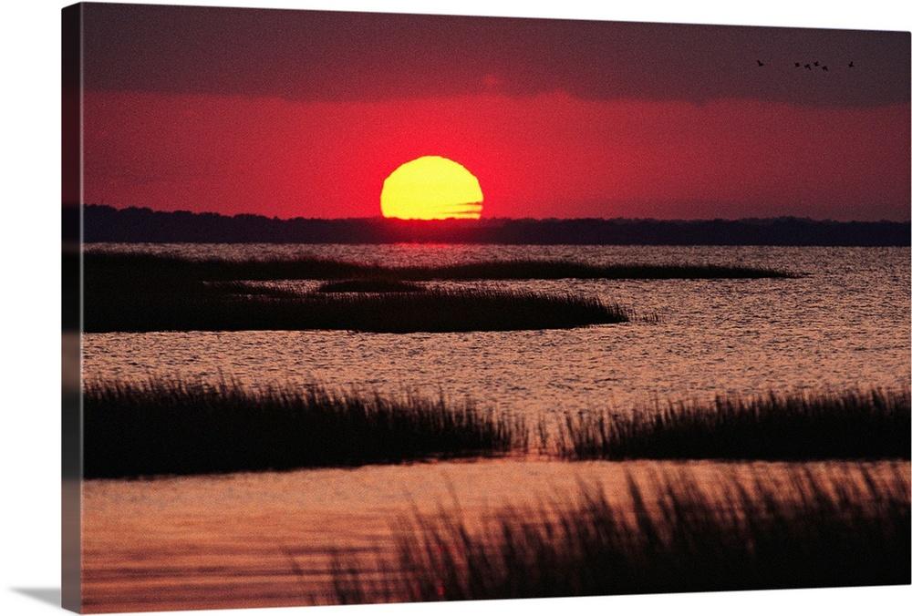 Sunset over a Chincoteague Island marsh, Virginia