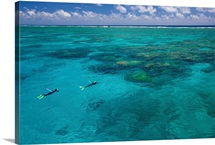 The Great Barrier Reef out of Port Douglas in Australia