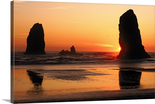 cannon beach big and beautiful singles This site melonsfield is a place to meet men desire to see women natural big tits  enjoy a large collection of ripe melons and remember to  big beautiful tits.
