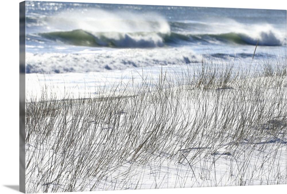 Winter Waves Crash Along The Snowy Coast Of Maine Wall Art Canvas Prints Framed Prints Wall Peels Great Big Canvas