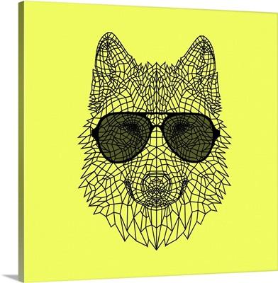 Wolf in Black Glasses