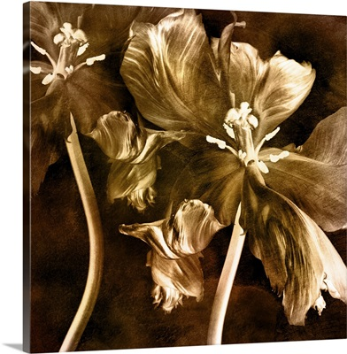 Antique Flower I