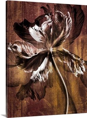Antique Flower III