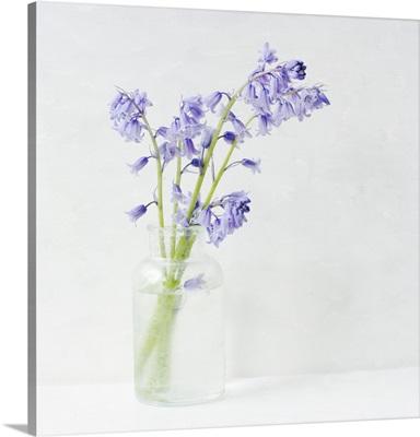 Blue Bell Bouquet I
