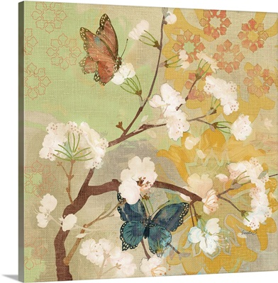 Burgos Butterflies