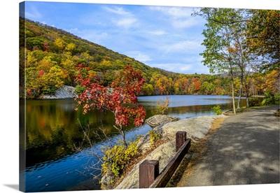 Fall Foliage in Bear Mountain I