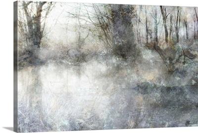 Forest Awakening