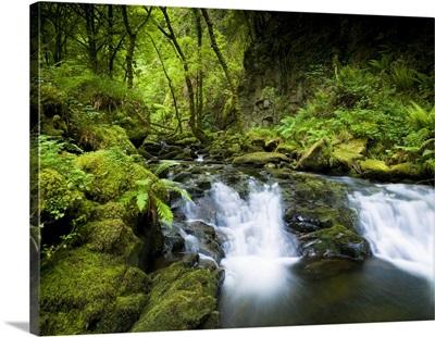 Ireland Killarney National Park Torc Falls