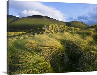 Ireland Ross Behy Sand Dunes III