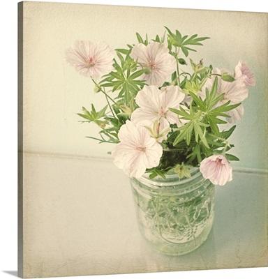 Jar of Geraniums