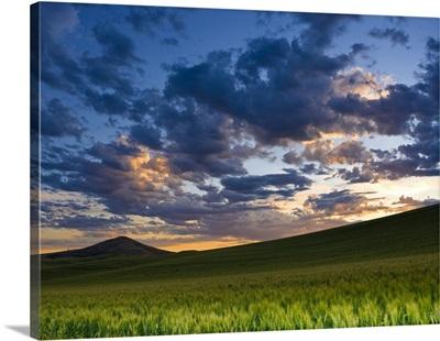 La Palouse, Dawn near Steptoe