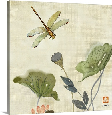 Lotus Seedpods