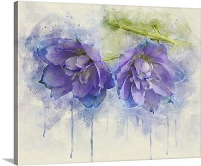 Painted Petals II