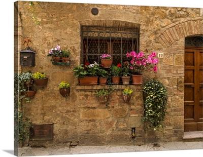 Pienza Window Flowers