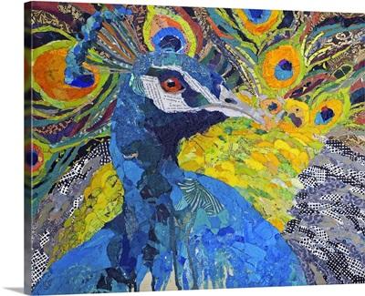 Poised Peacock I