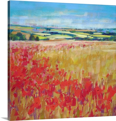 Poppies and Rolling Hills England