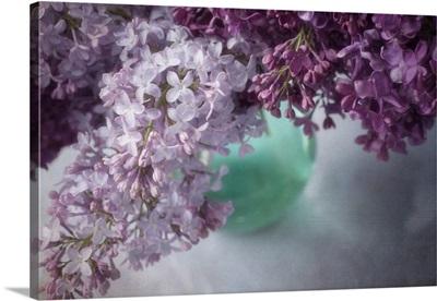 Purple Ligh