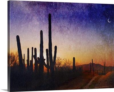 Saguaro Sunset Blue